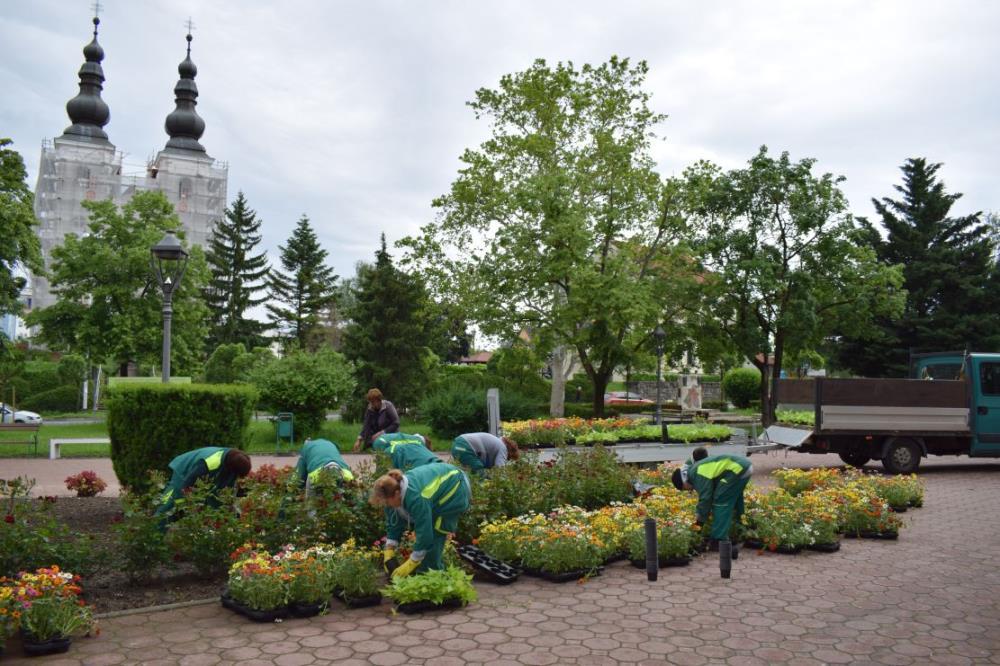 Cvjetno Uređen Sesvetski Sredisnji Trg